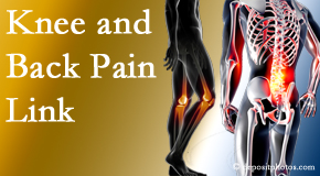The Chiropractic TRUhealthDR treats back pain and knee osteoarthritis to help prevent falls.