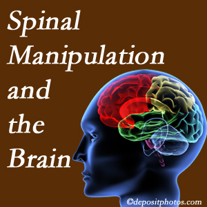 The Chiropractic TRUhealthDR [shares research on the benefits of spinal manipulation for brain function.